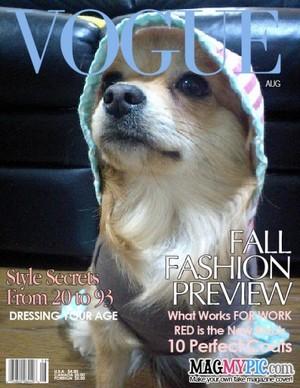 Vogue_med