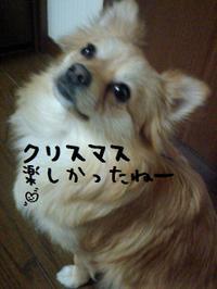 Pap_05202_2