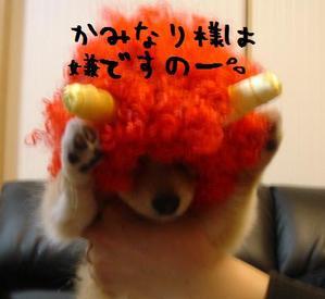 Dsc002842_2