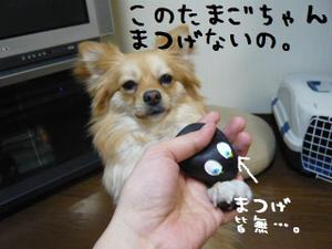 200801382_2