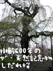 P10309622
