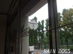 Rain_dog