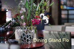 Gland_flo