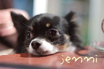 Jenni2