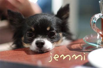 Jenni_2
