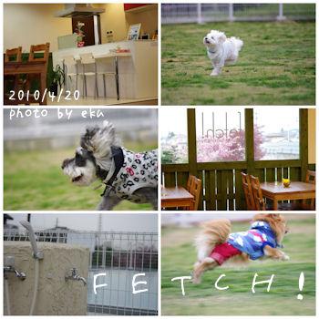 Fetch2