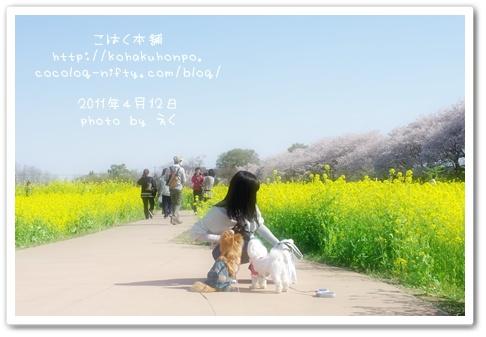 Ayako_2