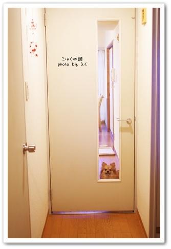 Door_2